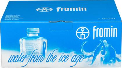 Акция на Упаковка воды ледникового периода питьевой негазированной Fromin Ledovka Water 0.5 л х 12 бутылок (8594161670209) от Rozetka