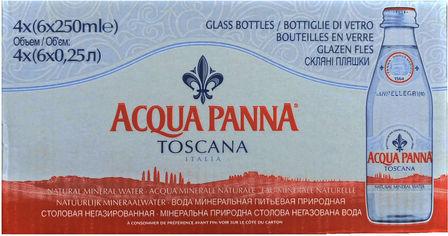 Упаковка минеральной негазированной воды Acqua Panna 0.25 л х 24 бутылки (8002270057625) от Rozetka