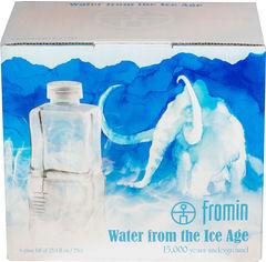 Упаковка воды ледникового периода питьевой негазированной Fromin Ledovka Water Glass 0.75 л х 6 бутылок (8594161671671) от Rozetka