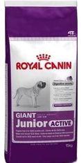 Сухой корм Royal Canin Giant Junior Active для щенков гигантских пород с высокими энергетическими потребностями старше 8 месяцев 15 кг (3182550779456) от Stylus