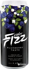 Упаковка сидра Fizz Blueberry 4% 0.5 л x 24 банки (4740098079309) от Rozetka