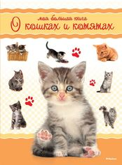 Моя большая книга о кошках и котятах от Book24