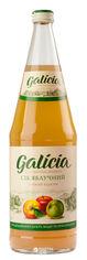 Упаковка сока Galicia Яблочный прямого отжима неосветленный 1 л х 6 бутылок (4820209560626) от Rozetka
