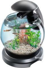 Аквариумный набор Tetra Cascade Globe 6.8 л для петушка и золотой рыбки Черный (4004218211827) от Rozetka