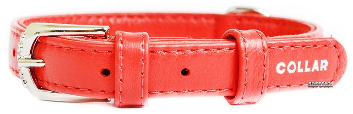 Акция на Ошейник для собак кожаный Collar WAUDOG Glamour с QR паспортом, без украшений, M, Ш 25 мм, Дл 38-49 см (33043) от Rozetka