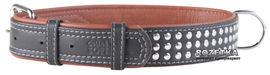 Акция на Ошейник для собак кожаный Collar WAUDOG Soft с QR паспортом, металлические украшения,L, Ш 35 мм, Дл 57-71 см (7225) от Rozetka