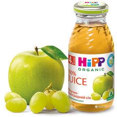 Акция на Упаковка яблочно-виноградного сока HiPP органического 200 мл х 6 шт (9062300402473) от Rozetka