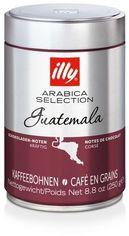 Arabica Selection Whole Bean Guatemala Illy 250 г (DL16856) от Stylus