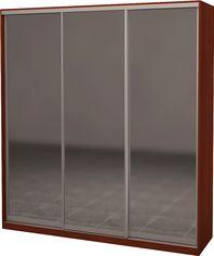 Шкаф-купе трехдверный Roko 224.2x242x60 см Зеркало Яблоня локарно (20200024591) от Rozetka