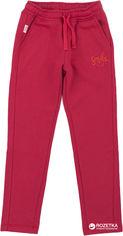 Спортивные штаны Бемби ШР478 104 см Красные (26478022239.L00) от Rozetka
