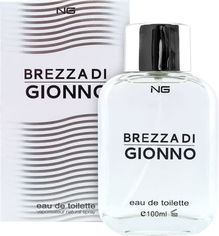 Акция на Туалетная вода для мужчин NG Perfumes Brezza Di Gionno 100 мл (8719214750602) от Rozetka