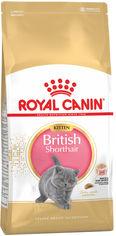 Акция на Сухой корм для котят породы британская короткошерстная до 12 месяцев Royal Canin British Shorthair Kitten 10 кг (3182550816540) (99312) от Rozetka