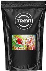 Акция на Кофе в зёрнах Trevi Арабика Коста-Рика 500 г (4820140051719) от Rozetka