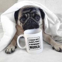 Акция на Оригинальная прикольная чашка на подарок для владельцев собак породы мопс (ART_36) от Allo UA