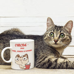 Акция на Оригинальная прикольная чашка на подарок для любителей обладателей кошек и котов (ART_51) от Allo UA