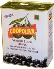 Акция на Маслины Coopoliva без косточек Черные 8 л (8410522003038) от Rozetka