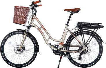 Акция на Электровелосипед TRINX E-Bike Sella 2.0 17 Champagne-Gold (Sella2_17.CG) от Rozetka