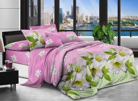 Акция на Комплект постельного белья Modern Микросатин 15-0145 Piccolo 143х210 (2200002613422) от Rozetka
