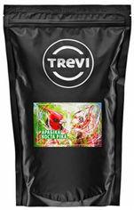 Акция на Кофе в зёрнах Trevi Арабика Коста-Рика 1 кг (4820140040812) от Rozetka
