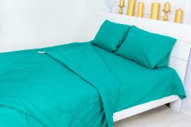 Акция на Летний постельный комплект MirSon №2426 Thinsulate 17-4735 Caterina одеяло 220х240 см + наволочки 2 х 50х70 см + простынь 220x240 см (2200003107548) от Rozetka