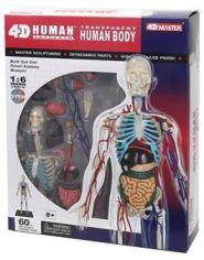 Акция на Объемная анатомическая модель 4D Master Тело человека прозрачное FM-626204 от Stylus