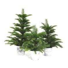 Акция на Новогодняя искусственная елка EL офисная «Натюрель» h 55 см из пластика от Allo UA