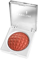 Бронзатор Careline Golden Rose 12 г (7290011114183) от Rozetka